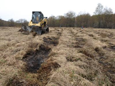 Photo of machine preparing site for woodcock habitat