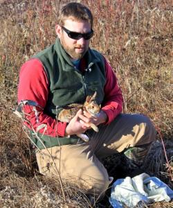Biologist holding New England cottontail