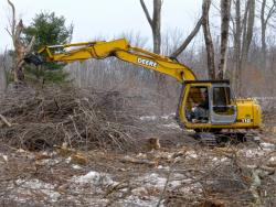 Building brushpiles for wildlife