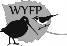 Wisconsin Young Forest Project logo