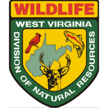 West Virginia Division of Natural Resources Logo